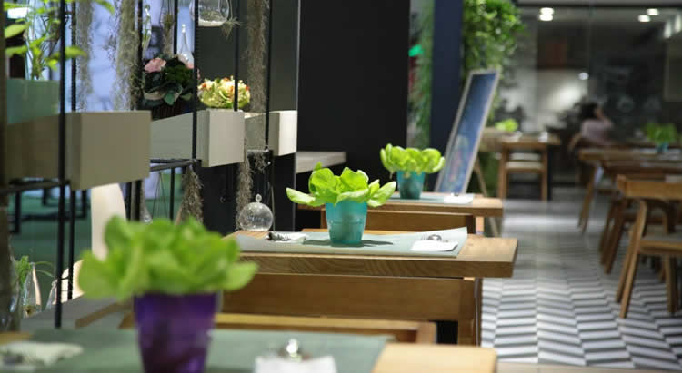 Carbon Free Dining - 6 Ways Your Restaurant Can Become More Sustainable For Free